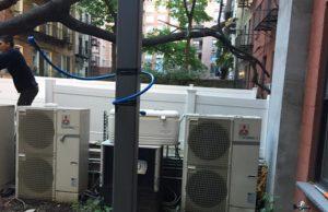 Cheap Tree Service NYC